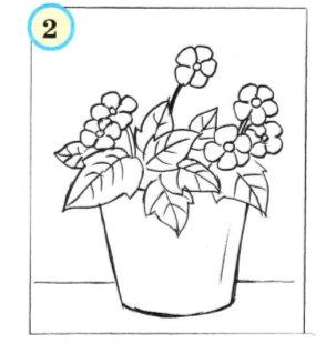 Как нарисовать цветы в горшках карандашом поэтапно