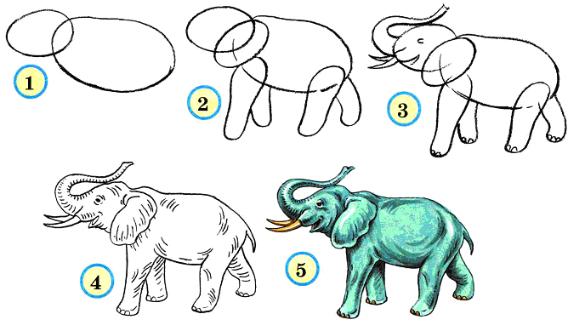 Схемы рисования диких животных